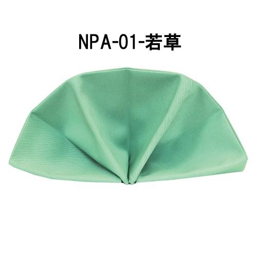 npa01-12