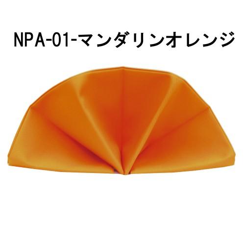 npa01-16