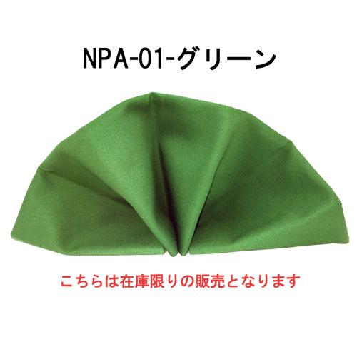 npa01-18