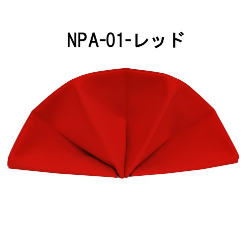 npa01-6
