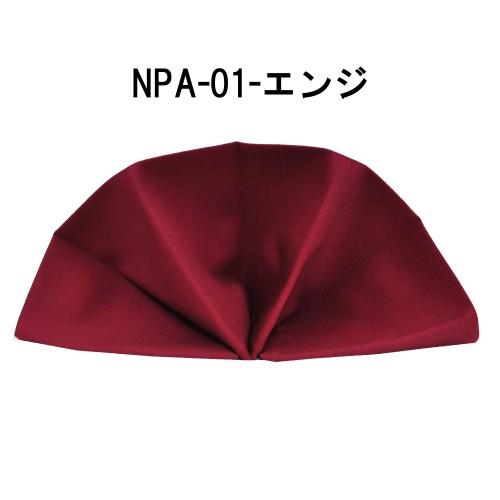 npa01-8